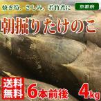 【送料無料】京都府産 朝掘り 京たけのこ 約4kg箱(5〜7本入り)
