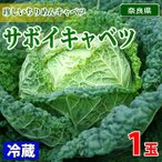 奈良県産 サボイキャベツ 秀品 1玉(約800〜900g)