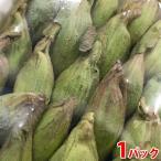 秋田県産他 ふきのとう 100gパック