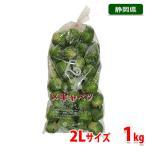 静岡県産 芽キャベツ 2Lサイズ 約1kg(35〜40個入り)