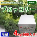 promart-jp_21710099-1