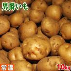 静岡県産 男爵いも 10kg
