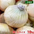 【送料無料】兵庫県産 玉ねぎ 秀品・M〜Lサイズ 10kg箱