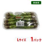 徳島県産 タラの芽 Lサイズ 1パック(約50g)