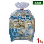 鳥取県産 らっきょう 鳥取らっきょう(らくだ・洗い) 1kg