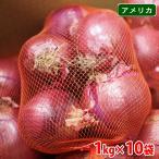 送料無料 アメリカ産 赤玉ねぎ アーリーレッド 10kg(1kgネット×10袋入)