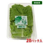 promart-jp_21710433