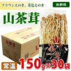 長野県産 山茶茸 150g×30パック入り箱