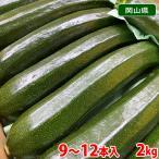 岡山県産 緑色ズッキーニ Lサイズ 2kg