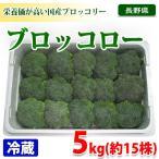 長野県産 ブロッコリー Lサイズ・5kg(15株入)