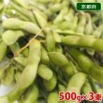 京都府産 黒枝豆(枝付き)500g×3束