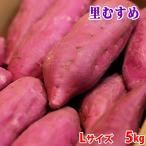 徳島県産 なると金時 里むすめ 秀品 Lサイズ(24〜15本入り)5kg
