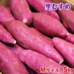 徳島県産 なると金時 里むすめ 秀品 Mサイズ(26〜28本入り)5kg