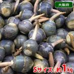 大阪府産 くわい(クワイ・慈姑) 秀品 Sサイズ 1kg