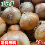 【送料無料】北海道産 ふらの 玉ねぎ Lサイズ 20kg
