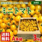 【送料無料】長崎県産 ミニトマト・イエロー(黄色)A等級・3kg(1箱)