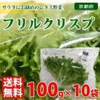 【送料無料】京都府産 フリルクリスプ 100g×10袋入り 1箱