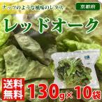 【送料無料】京都府産 レッドオーク 130g×10袋入り(1ケース)