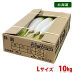 送料無料 北海道産 帯広 大正だいこん L〜2Lサイズ 8本入り(1箱)