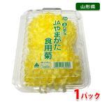 山形県産 食用菊(黄菊) 1パック(約85g)