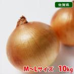 【送料無料】佐賀県産 玉ねぎ M〜Lサイズ 10kg箱