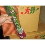 promart-jp_236a00006-1