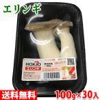 【送料無料】ホクト エリンギ 1パック(100g)×30パック 1箱