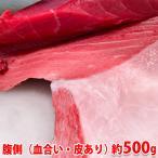 生・本マグロ 大トロ・中トロ・赤身ブロック 約500g(国産・養殖)腹側