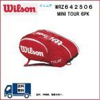 WILSON ウィルソン ミニツアー 6PK バッグ WRZ642506