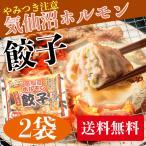 【送料無料】からくわ精肉店 気仙沼ホルモン餃子 2袋セット(1袋8個入×2) やみつき味噌にんにく味のホルモンと野菜がタップリ◎