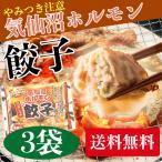【送料無料】からくわ精肉店 気仙沼ホルモン餃子 3袋セット(1袋8個入×3) やみつき味噌にんにく味のホルモンと野菜がタップリ◎