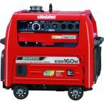 (特価)(代引き不可)新ダイワ ガソリンエンジン発電機兼用溶接機 160A(EGW160M-I)