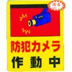 光 防犯カメラ作動中0.2×80×100(RE801-2)
