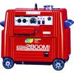 (代引き不可)新ダイワ ガソリンエンジン発電機兼用溶接機(EGW2800MI)