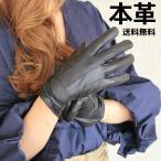 手袋 画像