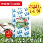 ショッピングお試しセット 乳酸菌 EC-12 プラス青汁 乳酸菌 青汁 お試しセット! 3g×14包 国産 大麦若葉 抹茶風味 美容 ダイエット【メール便送料無料】