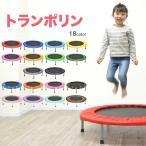 トランポリン 子供から大人まで 耐荷重110kg 家庭用 プレゼント エクササイズ 102cm