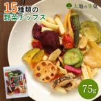 野菜チップス 65g 500円 野菜スナック お菓子 ギフト 人気 おやつ こども 母の日 ドライフルーツ ポイント消化 送料無料