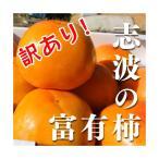 訳あり!福岡県産志波柿 富有柿 M〜2L混合 約11個【ご家庭用】