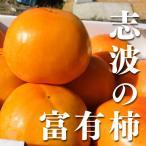 【送料無料】(朝倉市特産品)(まぼろしの柿)福岡県産志波柿 太秋 2L 12個 朝倉市特産品
