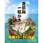 【送料無料】【福岡県産】豊前海一粒かき 中粒/45〜60個 3kg