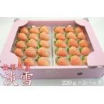 【送料無料】佐賀県白石町の高級ブランド苺「淡雪」 2パック イチゴ 白いちご 苺  岸川農園