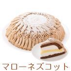 即日発送 ドーム型 マローネズコット マロンケーキ 7号 21.0cm 約820g ホールタイプ バースデーケーキ 誕生日ケーキ 送料無料(※一部地域除く)
