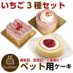 犬用ケーキ コミフ いちごケーキ 3種類セット ペット用ケーキ ペットケーキ 飼い主も一緒に食べられるスイーツ 送料無料 (※一部地域除く)