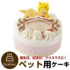 ペットケーキ 記念日ケーキ 猫用 ネコちゃん用 ペット用ケーキ 猫用ケーキ 誕生日ケーキ バースデーケーキ