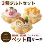 犬用ケーキ 誕生日ケーキ  プチタルトケーキセット (苺、栗、チーズ) ペットケーキ