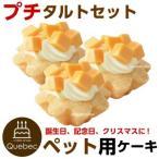 犬用ケーキ 誕生日ケーキ プチタルトセット(チーズのタルト3個セット)  ペットケーキ