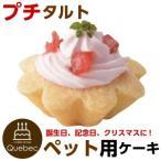 犬用ケーキ プチタルト いちごのタルト ペット用ケーキ ペットケーキ