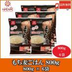 もち麦 はくばく もち麦ごはん 800g 6袋 送料無料
