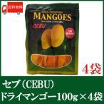 ドライマンゴー セブ 100g×4袋 ドライフルーツ 送料無料